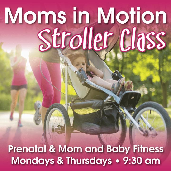 Mom's-in-Motion-web-blog