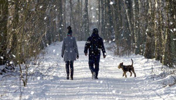 Port Elgin fitness winter walk