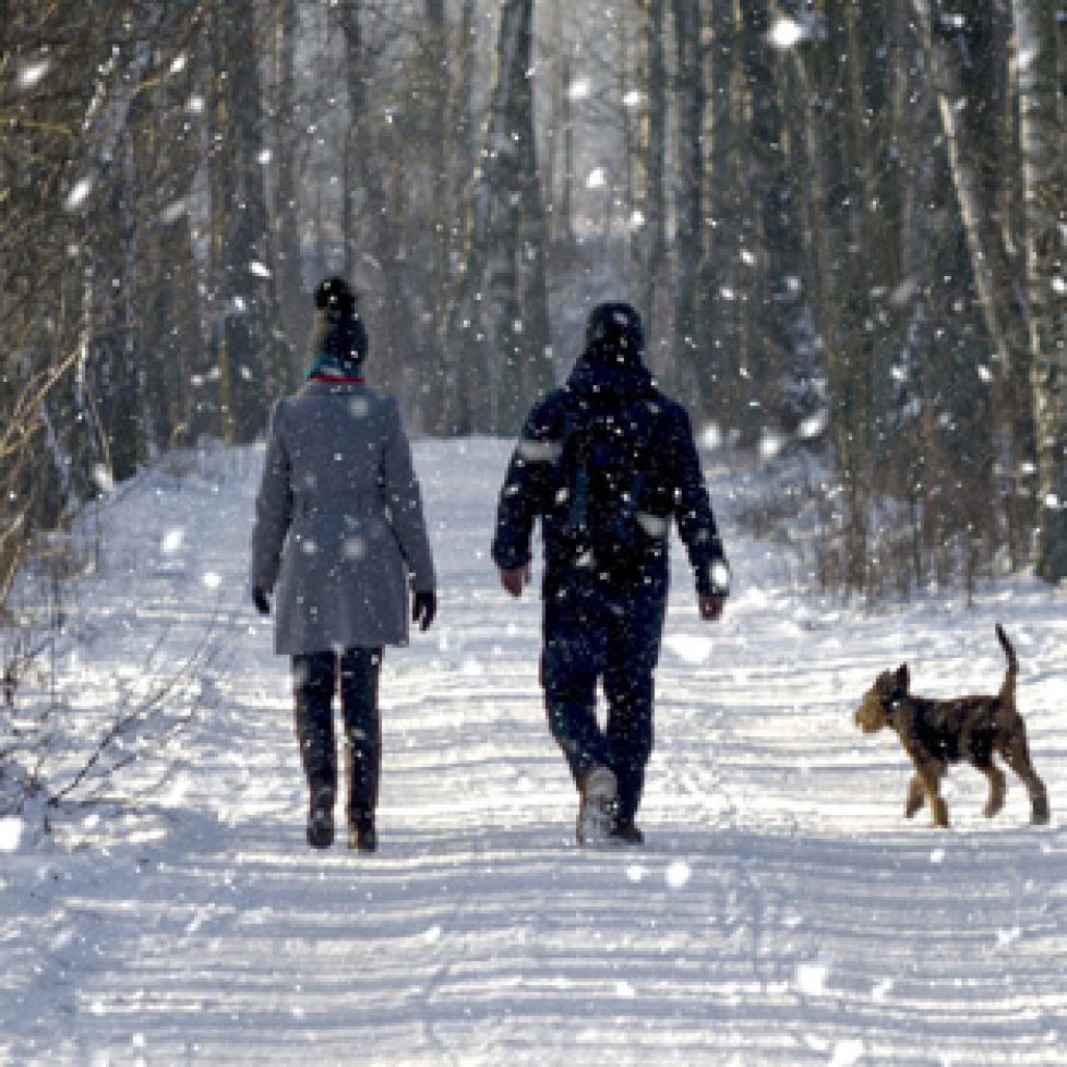 Port Elgin fitness winter walk